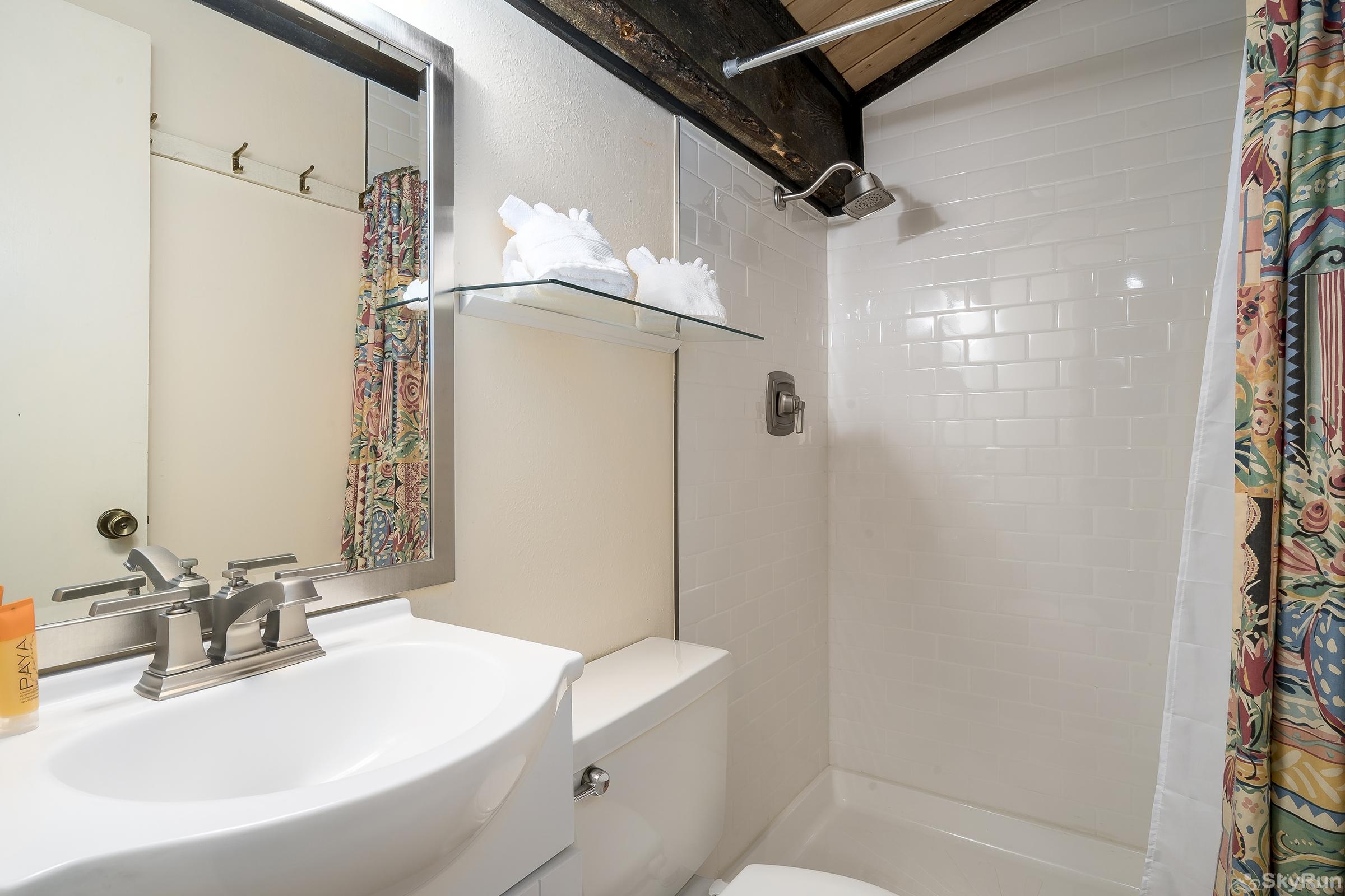 Herbage Townhomes E1 Updated bathroom with stand up shower
